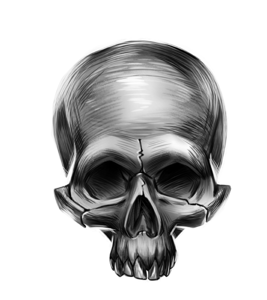 Schädel Zeichnung